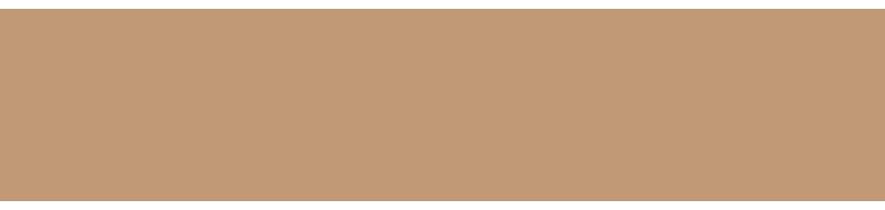 S+S_Partner_Logo_01